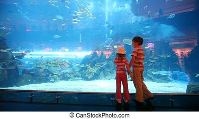 back view of children at aquarium - back view of two...