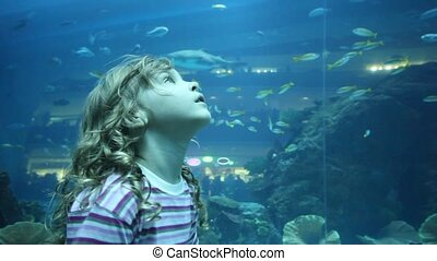 girl on close shot standing in oceanarium - little girl on...