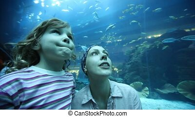 woman and girl on close shot in oceanarium - young woman and...