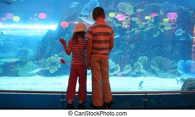 two children at aquarium speaking with each other, back view