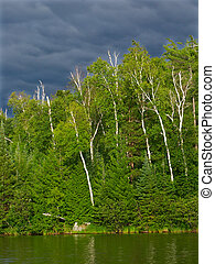 Sweeney Lake - Wisconsin - Evening view of Sweeney Lake in...