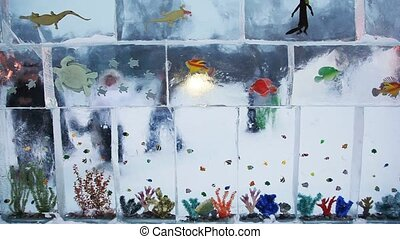 transparent wall is done from rectangular ice bricks algae,...