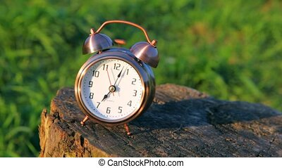 classical alarm clock on stub ringing against grass -...