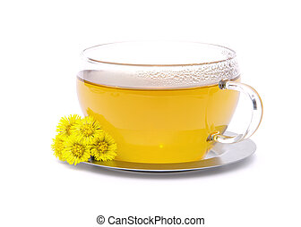 tea Coltsfoot 02