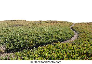 Dirt Pathway Leading onto Horizon