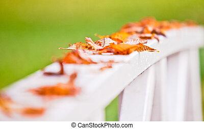 Herbst - jaherszeit