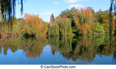 Fall foliage reflected in the Lake