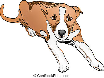 puppy dog freehand vector