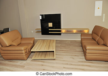 modern livingroom indoor with new furniture and home...