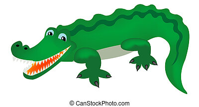 Green crocodile - Reptile crocodile on white background