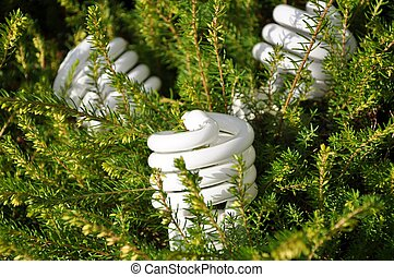 Save energy bulb with pine tree background