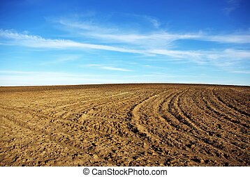 Texture of cultivated field.