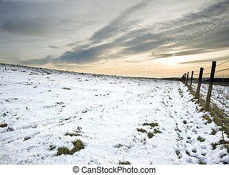 Winter snow landscape over fields with trees and glowing...
