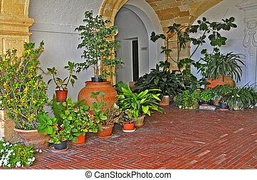 balearic courtyard