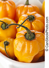 Hot and Spicy - Close up of scotch bonnet peppers in small...