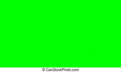 Baseball Transition Green Screen