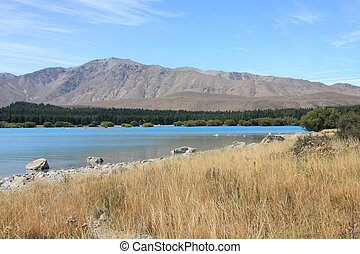 Lake Tekapo landscape in Canterbury region of New Zealand