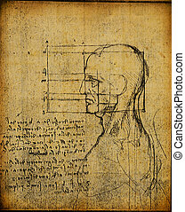 anatomy art - Anatomy art by Leonardo Da Vinci from 1492 on...