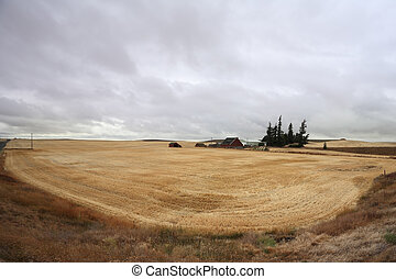 Rain clouds over fields of Montana after harvesting