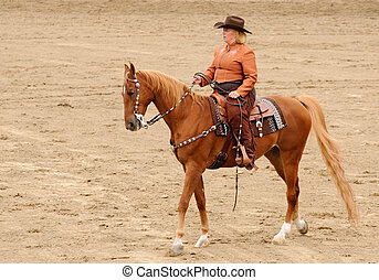 Western tack on a Saddlebred - Woman in western clothing...