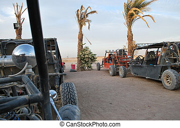 buggy - few buggy cars in desert and palms