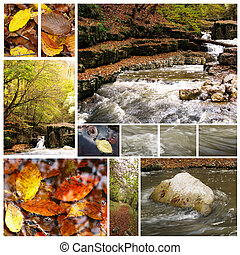 Collection of autumn photographs