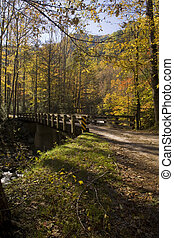Bridge, Autumn, Tremont, Smokies NP, TN - Bridge, Autumn,...