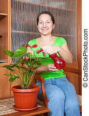 woman with anthurium in flowering po - Mature woman with...