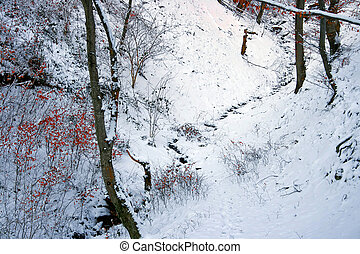 Winter forest 14 - Somewhere in the forests of Jgheabu, near...