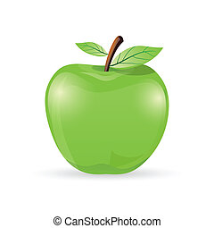 apple - illustration of natural apple on white background