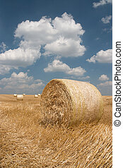 Agriculture - Haystack on harvested field