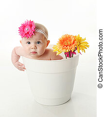 Baby girl in a flower pot - Portrait of an adorable baby...