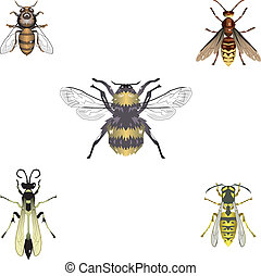 Five vector bees and wasps
