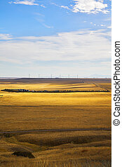 Wind-driven generators - The American prairie in October The...