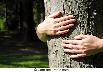 nature - embracing a tree with hands shwing nature...