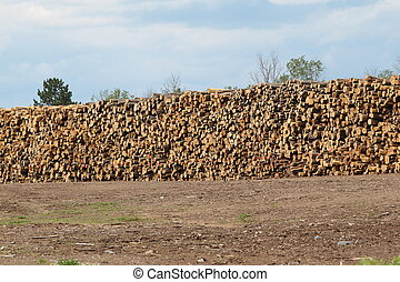 Huge stack of logs at the sawmill