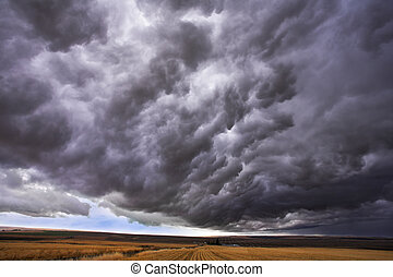 The thundercloud closes the sky above boundless plain in...