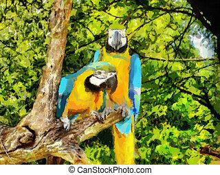 Papagáj, két
