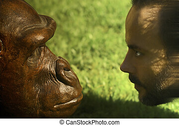 evolution - a man and an ape facing each other and staring...
