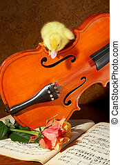 Duck on a violin