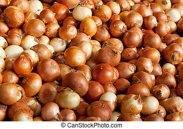 Background of onions - Background of golden onions at the...