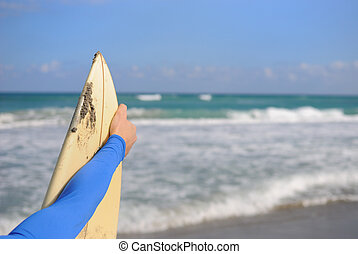 Surfer holding his board
