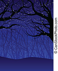 Holiday forest canopy - Winter forest lit with tiny white...