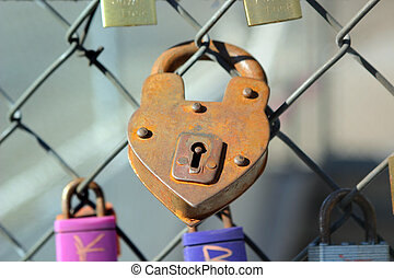heart padlock on a metal fence with other locks surrounding