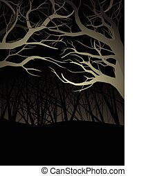 Forest at night - Traveling through the forest on a cold...