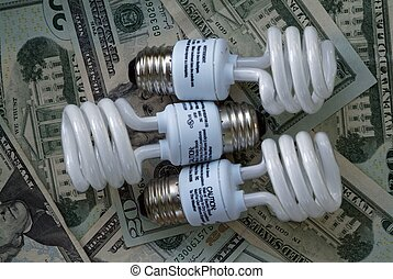 Save money with compact Fluorescent - Save electricity and...