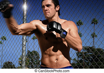 boxer punching by fence - boxer punching by a fence with...