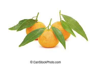 mandarine - fresh mandarine isolated on a white background
