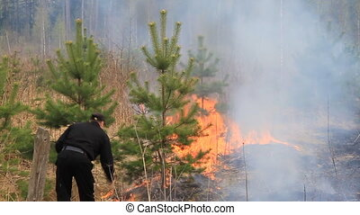 Fighting forest fires - Forest fire in the Moscow region...