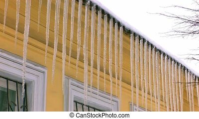 Dangerous icicles hanging from roof, closeup, Canon XH A1,...